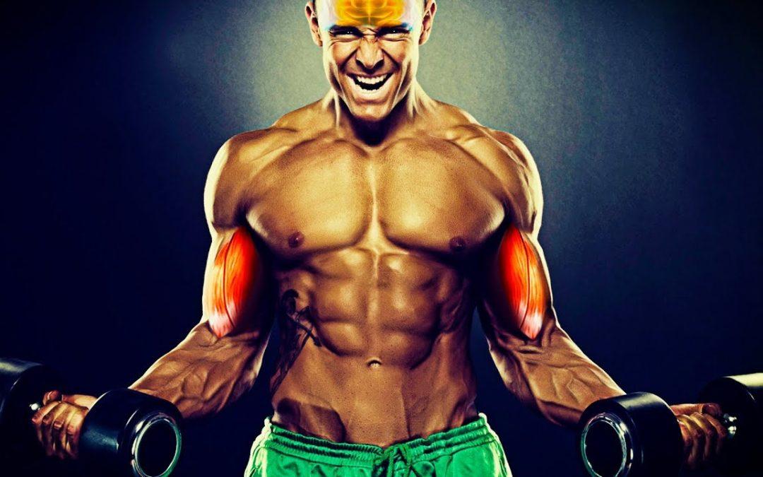La Conexión Mente-Músculo para ganar Masa Muscular