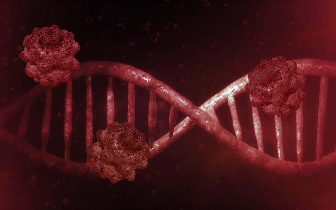 Coronavirus y Sistema Inmune. Entendiendo el escudo Inmonológico